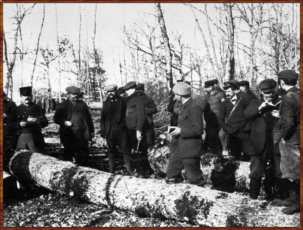 forestiers et bûcherons victor franck